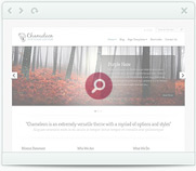 free premium template from elegant themes