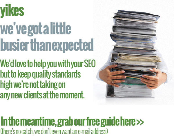 our seo services top banner
